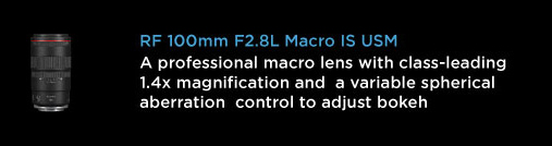 CANON RF 100mm MACRO