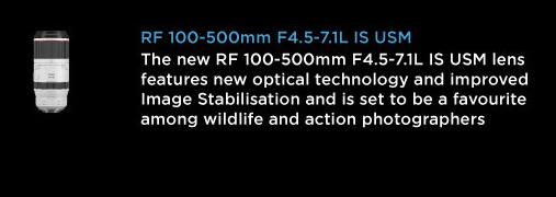 RF 100-500mm F4.5 - 7.1L IS USM